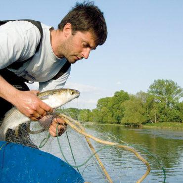 Bruno Gabris, pêcheur de Loire
